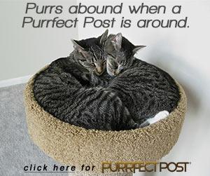Purrs abound when Purrfect Post is around